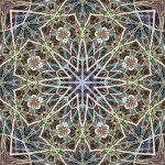 Thin stems and grasses in 8, 6 and 4-fold symmetrical tiling pattern