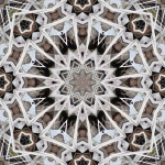 One of two 8, 6, 4-fold patterns from photo of sticks