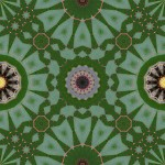 Tiling pattern with 16, 12 and 8-sided symmetries from leaf photo