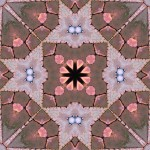 Discolored bricks in 8-fold symmetry pattern