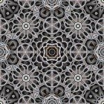 Tiling pattern of sticks and leaves in sunlight with 12, 8 and 6-fold symmetry
